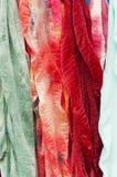 Bufandas de seda Fotografía de archivo libre de regalías