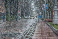 Bufera di neve con forte nevicata e vento bagnati Fotografia Stock Libera da Diritti