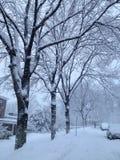 Bufera di neve di Boston Fotografie Stock Libere da Diritti