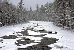 Bufera di neve di inverno Fotografia Stock Libera da Diritti