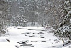 Bufera di neve di inverno Fotografie Stock