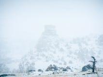 Bufera di neve a Hay Stack Rock immagini stock libere da diritti