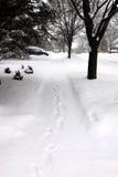 Bufera di neve nei sobborghi Immagini Stock Libere da Diritti
