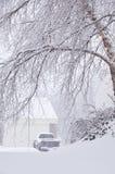 Bufera di neve nel Kentucky Fotografia Stock