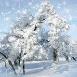 Bufera di neve nel parco di inverno Fotografia Stock