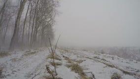 bufera di neve nell'inverno vicino alla foresta, lasso di tempo 4K video d archivio