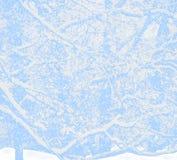 Bufera di neve nella foresta Fotografie Stock