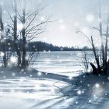 Bufera di neve nella foresta di inverno Fotografia Stock