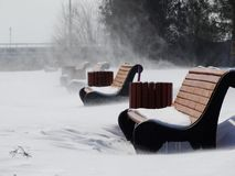 Bufera di neve sul vicolo del parco Immagine Stock Libera da Diritti