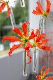 Bufet dekoracj kwiaty obraz royalty free