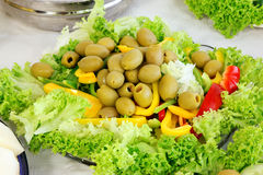 Salada verde-oliva do jardim Foto de Stock Royalty Free