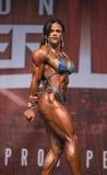 Buff Brazilian Babe Scores Big at Toronto Physique Battle. Sleek, buff Brazilian athlete Evelaine Rocha  displays a ferocious, powerful, bronzed body which Stock Image