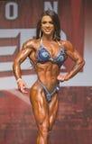 Buff Pro Figure Gal Lizenzfreies Stockbild