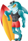 Buff surfer shark Stock Image