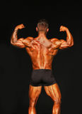 Buff, Tan Bodybuilder Strikes a Rear Double Biceps Pose Stock Images