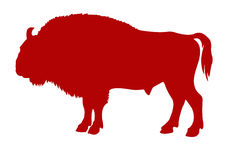 Buffalo. Vector silhouette of the buffalo on white background Royalty Free Stock Photography