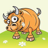 Buffalo. Cute cartoon bull on the green meadow-vector will be additional stock illustration