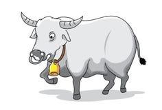 Buffalo immagine stock