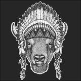 Buffalo, bison,ox, bull Cool animal wearing native american indian headdress with feathers Boho chic style Hand drawn. Buffalo, bison,ox, bull Hand drawn image Stock Images