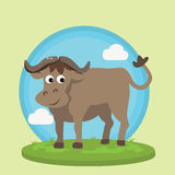 Buffalo bison smile character fun cartoon vector illustration animal wild in grass friendly Stock Image