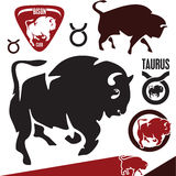 Buffalo. Bison. Taurus. Stock Photography