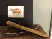 Buffalo bone knife royalty free stock photo