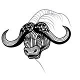 Buffalo bull head vector animal illustration for t-shirt. Stock Photography