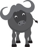 Buffalo cartoon Stock Images
