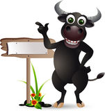 Buffalo cartoon with blank board Royalty Free Stock Images
