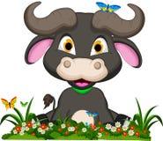 Buffalo cartoon with flowers garden Royalty Free Stock Image