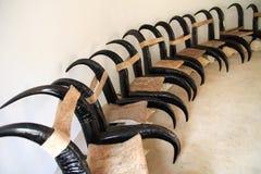Buffalo chair Royalty Free Stock Image
