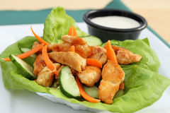 Buffalo chicken lettuce wrap Stock Image