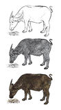 Buffalo eating hay-vector Stock Photo