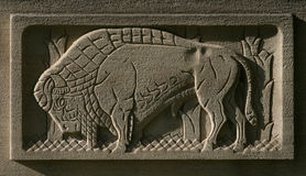 Buffalo Etched in Stone. A decoration on a Federal building in Buffalo Stock Photography