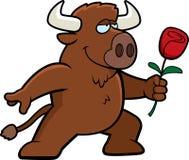 Buffalo Flower Stock Images