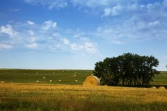 Buffalo Gap National Grasslands, South Dakota. Bales of Hay in the Fields. Bales of hay litter the countryside stock image