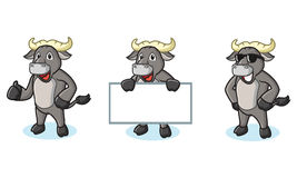Buffalo Gray Mascot happy. Pose and bring board Stock Images