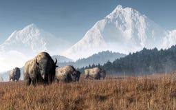Buffalo Grazing vector illustration
