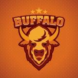 Buffalo Head Logo Mascot Stock Photos