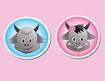 Buffalo. Head on pink background Stock Images