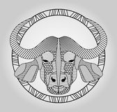 Buffalo head, symmetric hatched drawing in circle,  picture. Bufallo head totem. Stock Photo