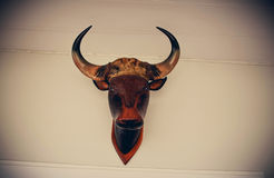 Buffalo head wall Stock Photos