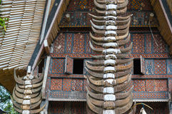 Buffalo horns at traditional houses in Tana Toraja, Sulawesi Stock Image
