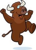 Buffalo Jumping Stock Photo