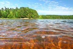 Buffalo Lake of Northwoods Wisconsin royalty free stock images