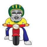 Buffalo motorcycle ride vector cartoon Royalty Free Stock Photo