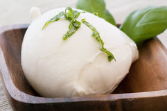 Buffalo Mozzarella Stock Photography
