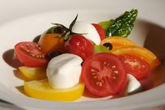 Buffalo mozzarella Stock Images