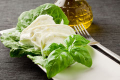 Buffalo Mozzarella with lettuce and basil Royalty Free Stock Images
