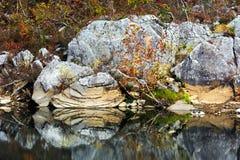Buffalo River Rock Stock Photography